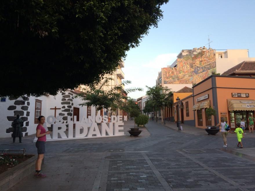 Los Llanos1