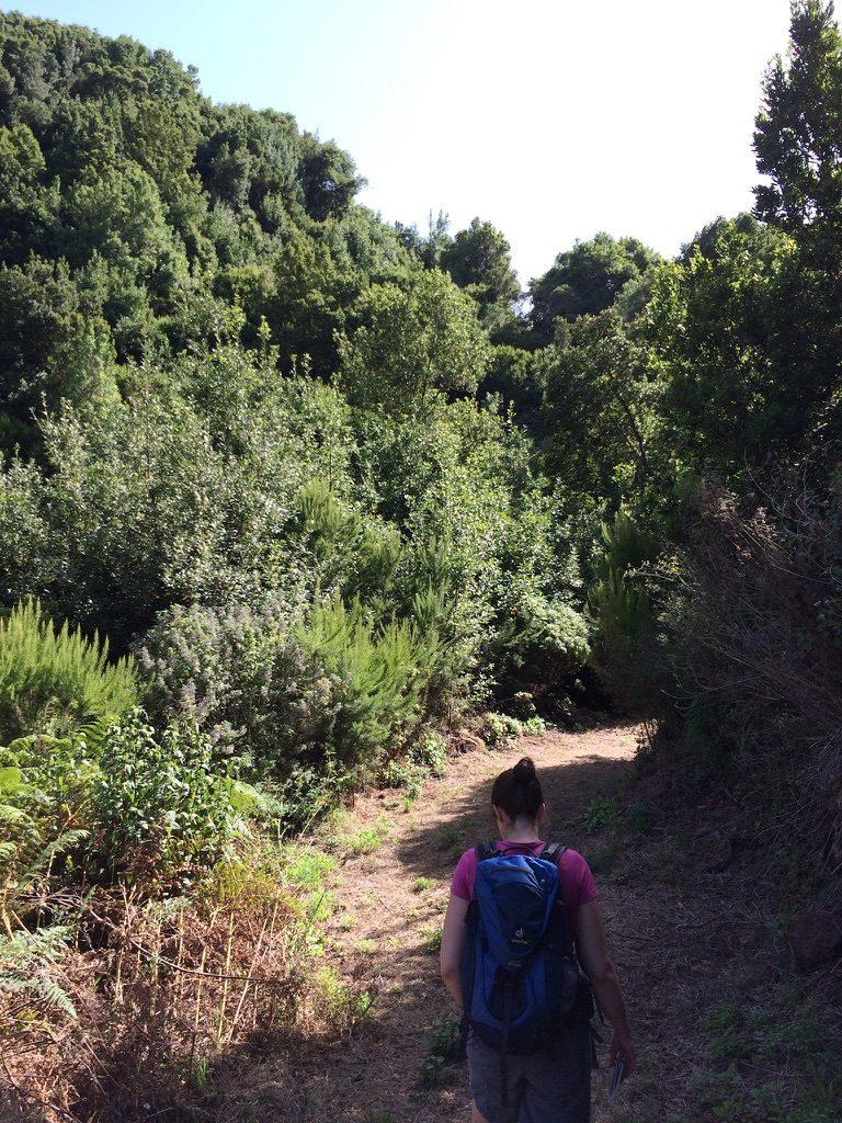Wandern La Zarza 2
