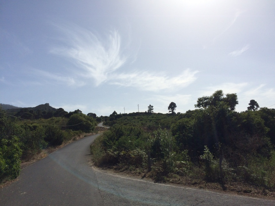 Wandern La Zarza 4
