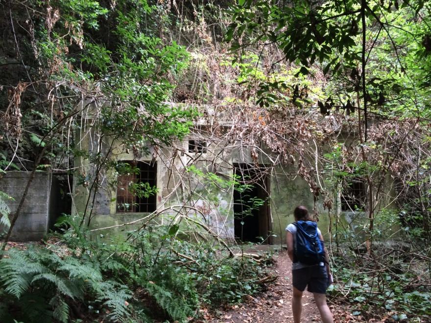 Wandern Los Tilos 4