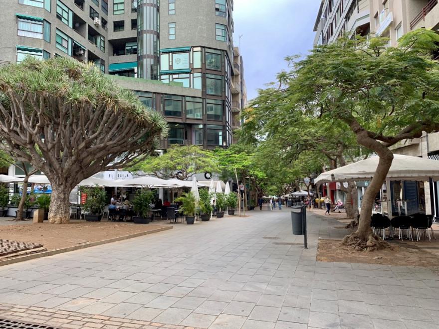Sightseeing in Santa Cruz de Tenerife 13