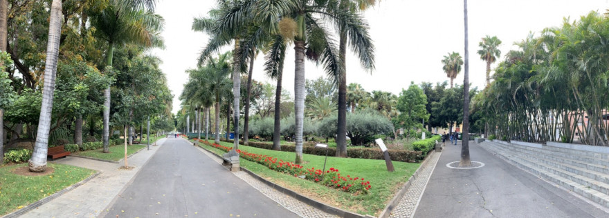 Sightseeing in Santa Cruz de Tenerife 28