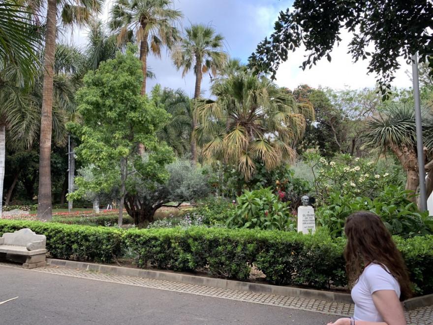 Sightseeing in Santa Cruz de Tenerife 29