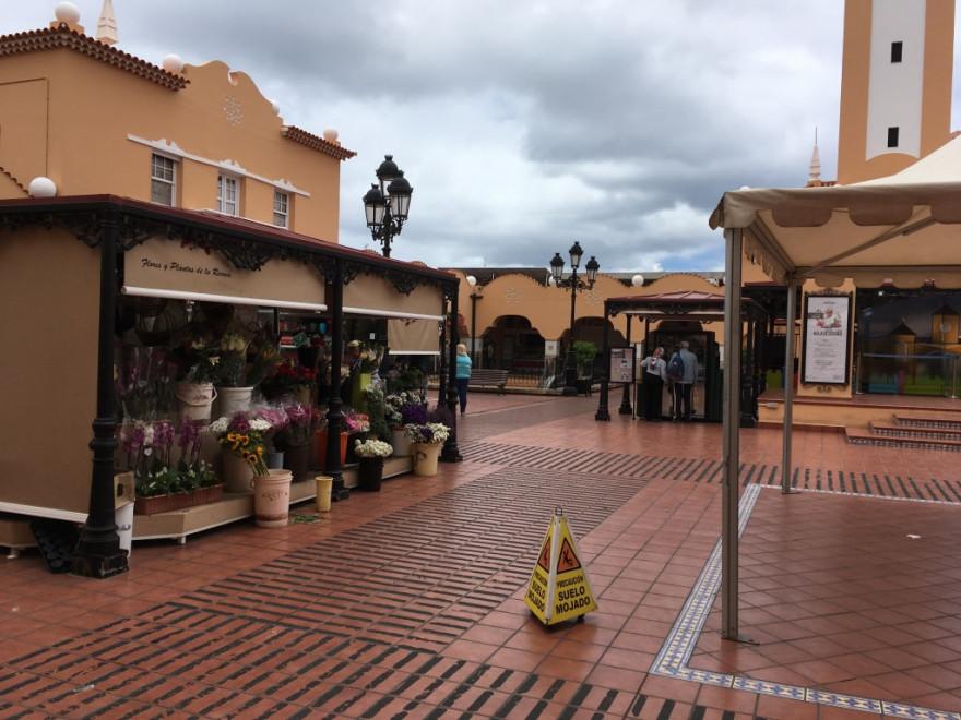 Sightseeing in Santa Cruz de Tenerife 32