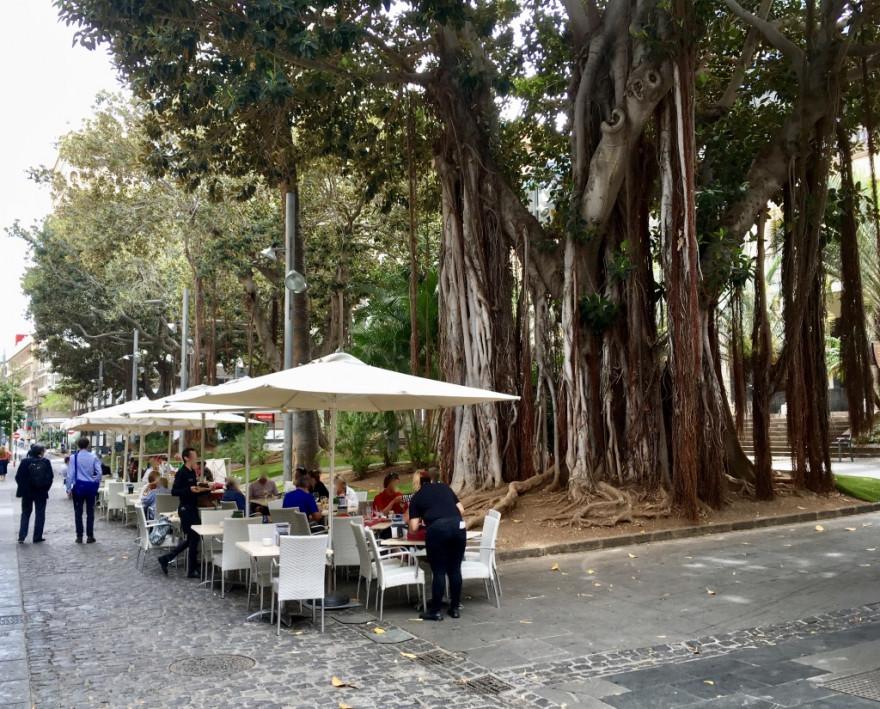 Sightseeing in Santa Cruz de Tenerife 6