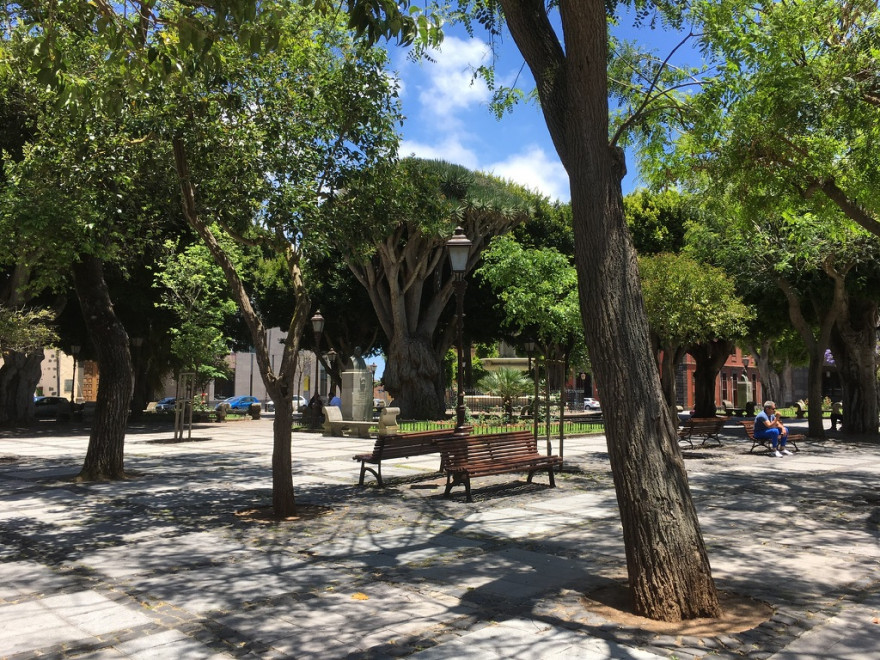 Unterwegs auf Teneriffa Spaziergang durch La Laguna 10