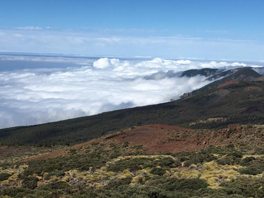 Wandern auf Teneriffa Rund um den Teide 13