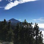 Wandern auf Teneriffa Rund um den Teide 5